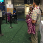 Hawaiian Air brings back direct flight to Maui from PDX