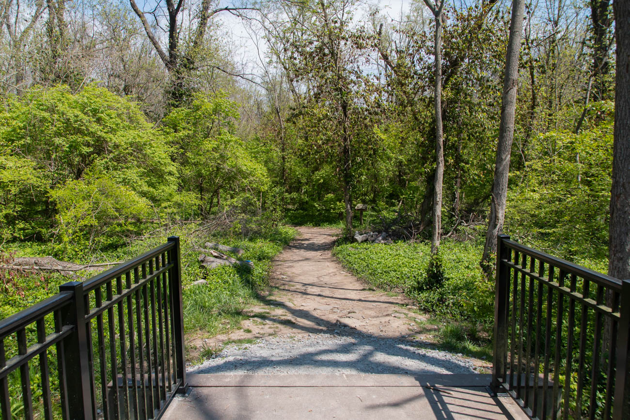 East Loveland Nature Preserve neighbors Historic Downtown Loveland, but you'd never know it once you're hiking in the quiet, well-maintained trails. While the Nature Preserve isn't located directly on the bike trail, it's just down the road and has a similar look and feel without the heavy foot and bike traffic. ADDRESS: 313-343 East Loveland Avenue (45140) / Image: Elizabeth A. Lowry // Published: 5.12.20