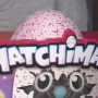 Hatchimals toy pets in high demand this holiday season