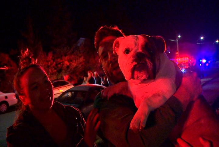 A dog named Kona helped tell residents they needed to get out of the burning apartment building in West Seattle early Friday morning. (Photo credit: Paul Stoos)