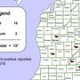Rabid bat found in Saginaw County; cases increasing statewide