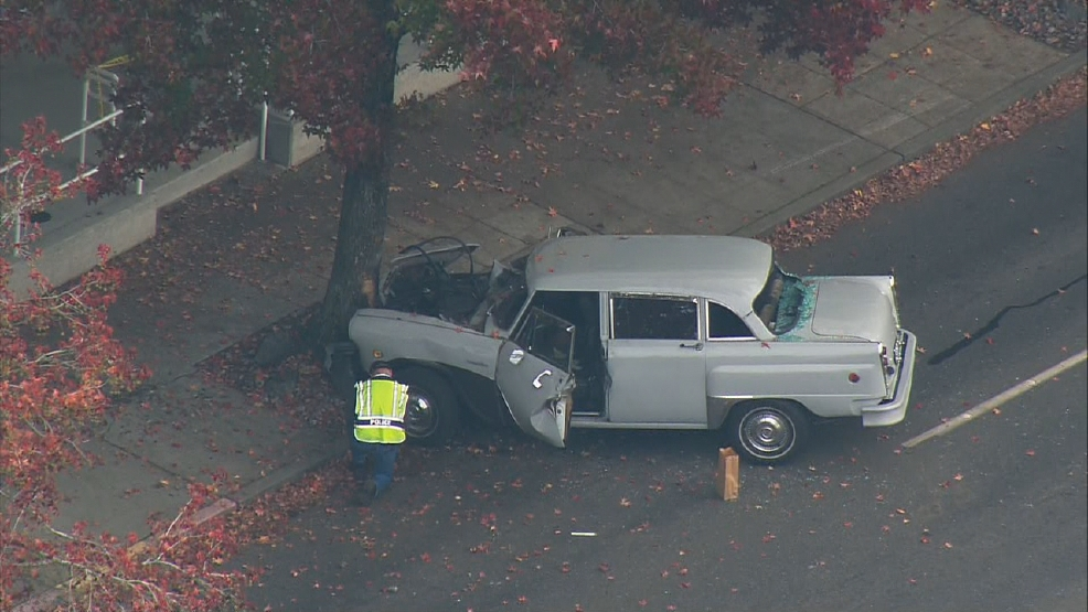 Driver dies after classic car slams into tree near Northgate Mall | KOMO