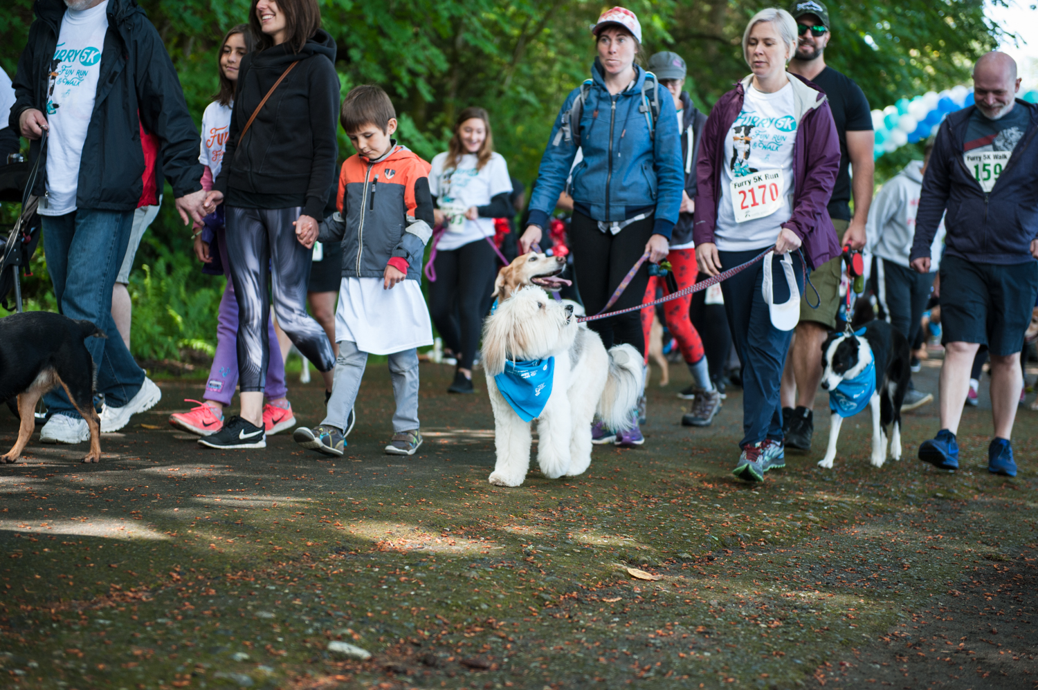 Sure - it was on-and-off raining and sunny, but that didn't stop hundreds of animal enthusiasts and their pups to swarm Seward Park on Sunday for the Furry 5k, presented by Rover and benefitting Seattle Animal Shelter. Seattle Refined, KOMO and STAR 101.5 were more than happy to be sponsors, and the post event happenings around the park were almost better than the race itself! (Image: Elizabeth Crook / Seattle Refined){ }