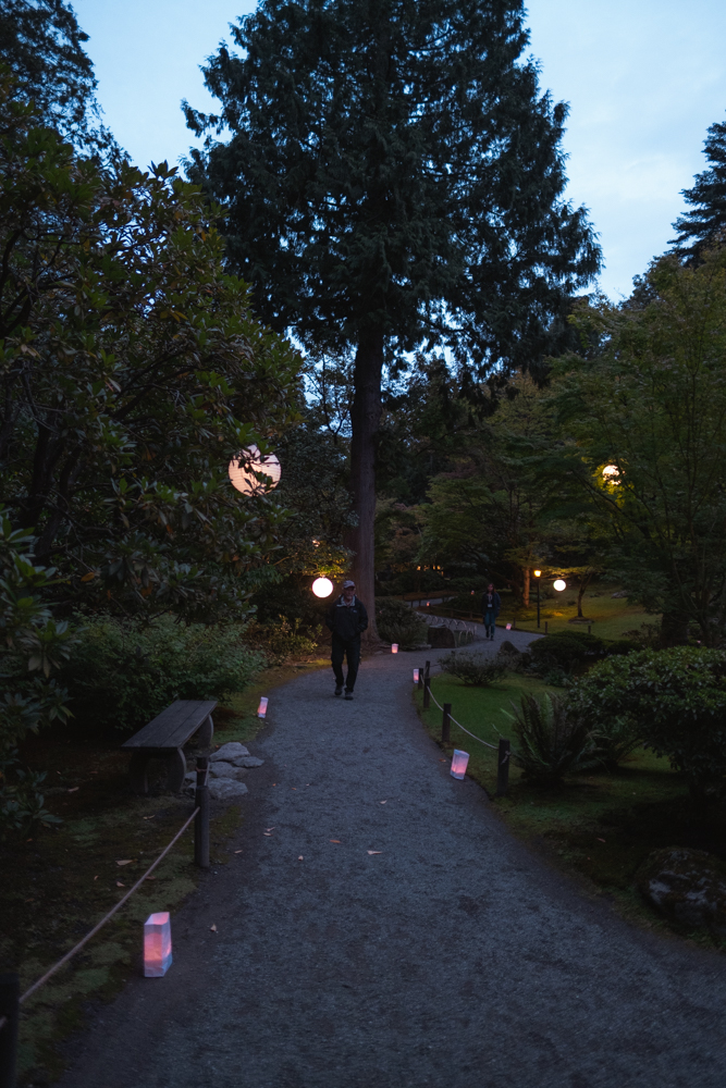 Every year, Seattle's Japanese Garden is lit with luminaries and lanterns to welcome the arrival of the full moon, in Japanese tradition. Otsukimi, or moon viewing, dates back to the 8th century where in Japan, on the 8th month of the old Japanese calendar, aristocrats celebrated the beauty of the autumnal full moon with poetry and music. (Image: Ryan McBoyle / Seattle Refined){ }{ }
