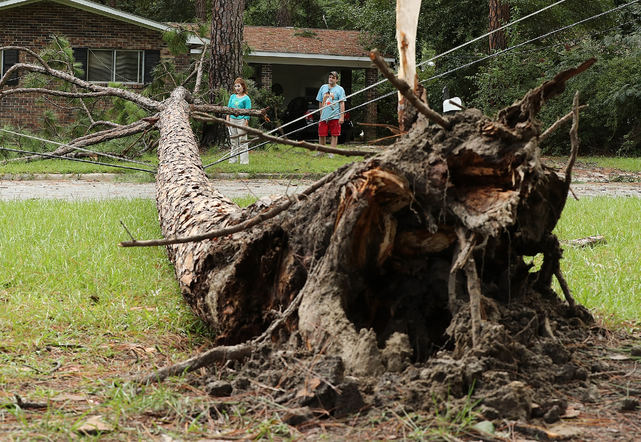 Chris Boland, rear right, whose home just missed a direct hit from a downed pine tree over the power lines, and Julia Tyson look over the aftermath Tropical Storm Hermine Friday, Sept. 2, 2016, in Valdosta. Ga. (Curtis Compton/Atlanta Journal-Constitution via AP)