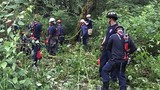 Firefighters rescue woman and horse after 20 foot fall down hillside