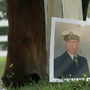 Horse therapy leads Navy veteran shot twice in the head from darkness to greener pastures
