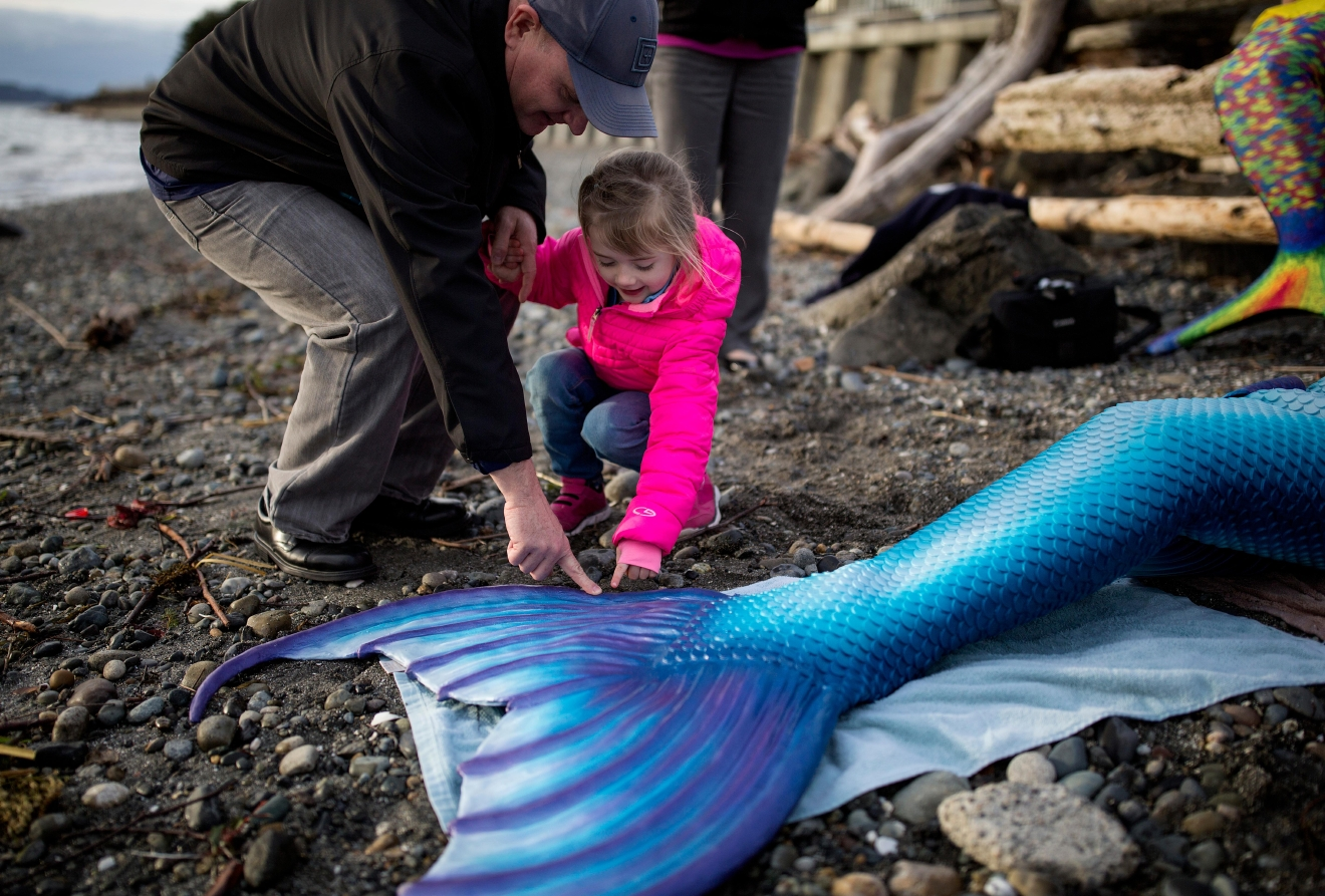 Pepper Weldon, 4, holds her father's hand as she pokes the end of one of the mermaids tails. (Sy Bean / Seattle Refined)