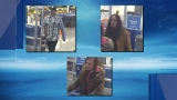 Police: Credit cards from car break-in used at metro Walmart