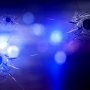 Chattanooga Police investigating shooting on Wilson Street