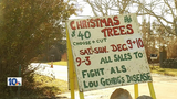 Fairhaven tree farm sales to raise money for ALS awareness