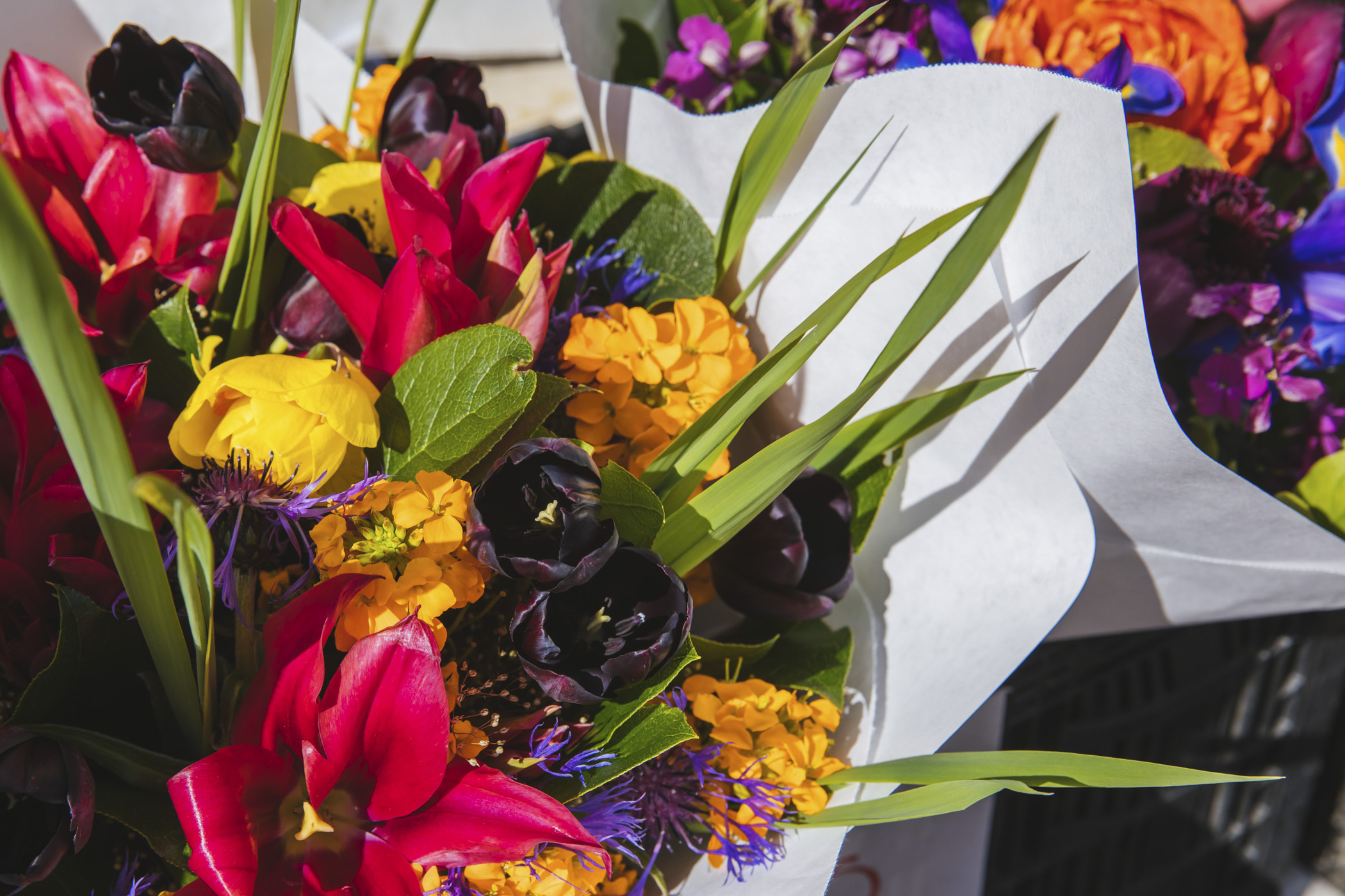 Sorry fish guys, but the flowers of Pike Place may be our personal favorite part of the market! For the entire weekend, they're celebrating spring (and moms!) with more than 40 vendors to browse for that perfect bouquet. (Image: Sunita Martini / Seattle Refined)