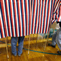Poll: Some voters cling to unproven claims of rigged election, illegal voting