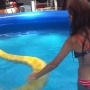 Girl swims with massive Burmese python