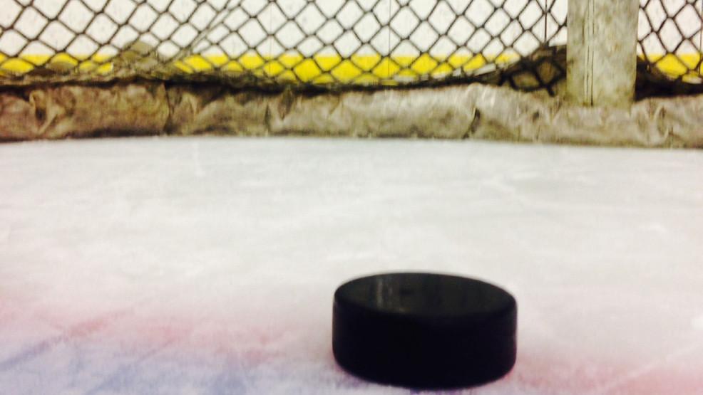 NHL stars buy stake in Dubuque USHL team