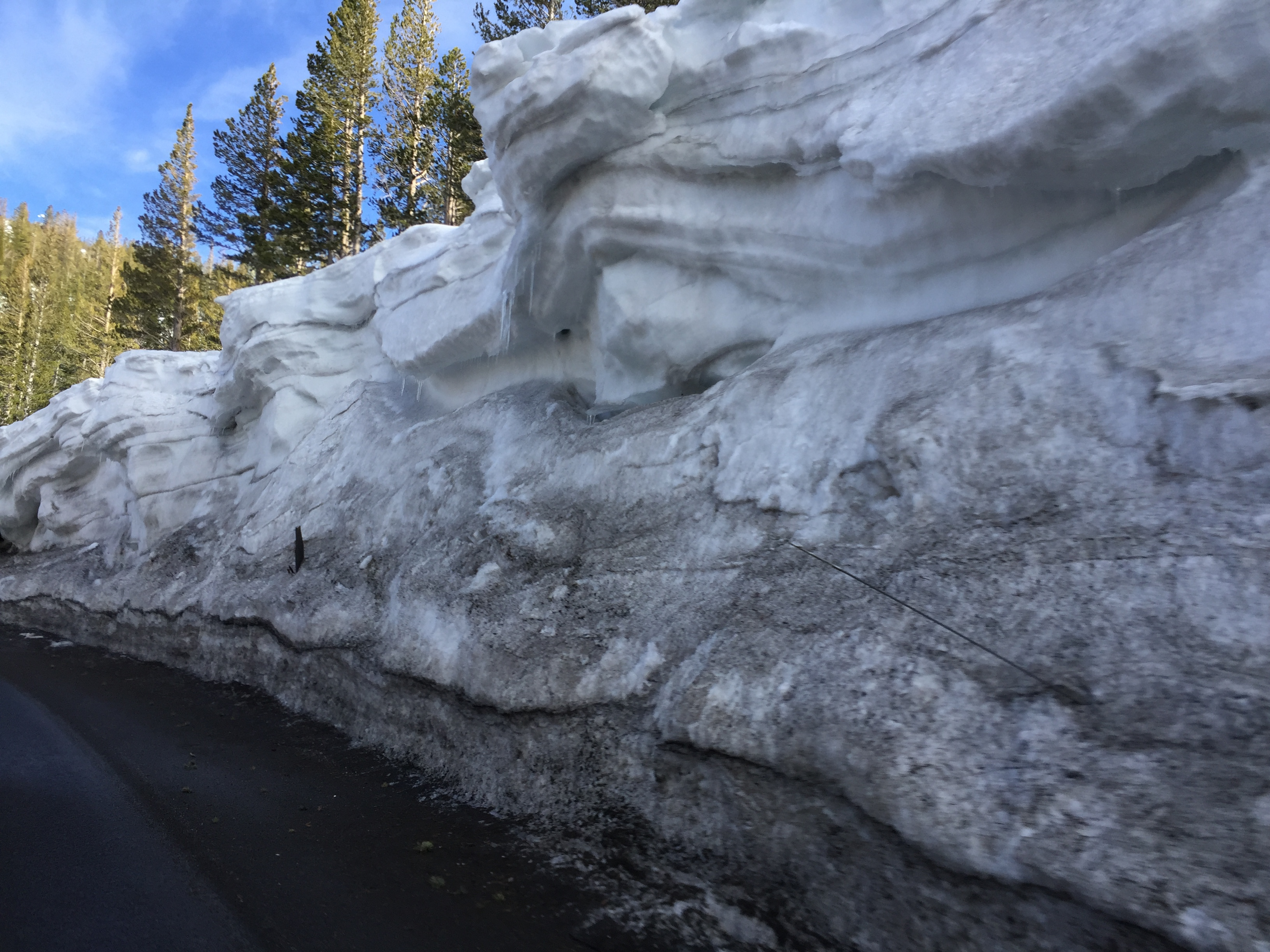 MT. ROSE SNOW WALLS.png