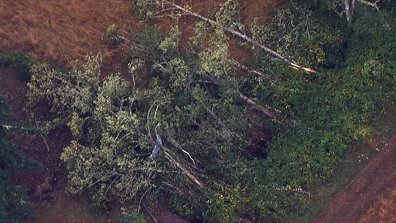 Trees appear to be knocked over from a possible tornado in Lacomb, Oregon on Tuesday, Sept. 19, 2017. (Photo: Chopper 2/KATU News)