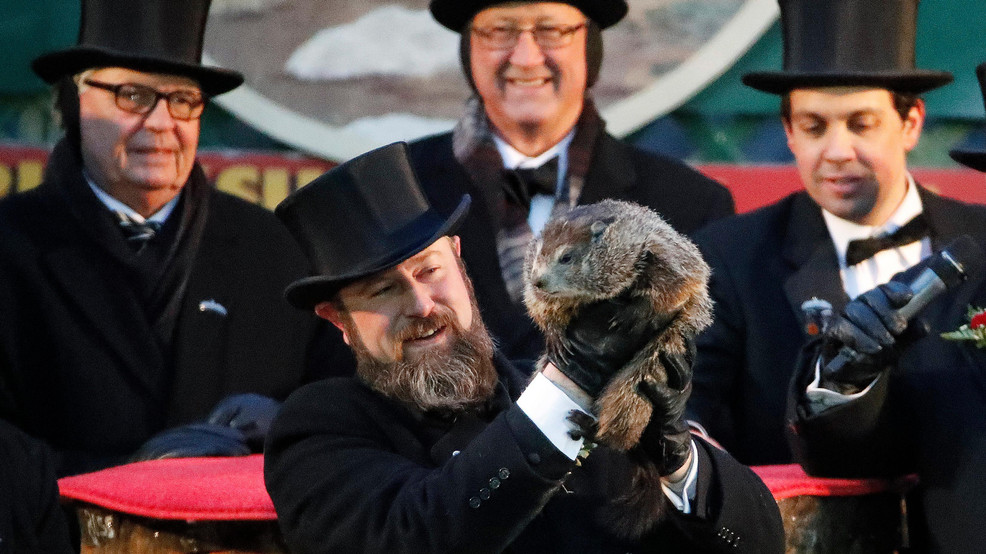 How did a groundhog get to be such a famous weather forecaster?