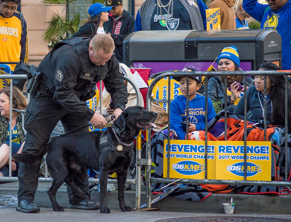 There was police presence at the Golden State Warriors victory parade. A bomb squad officer and K-9 patrol the crowd. Photo by Emily Gonzalez, Oregon News Lab.