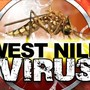Second bird with West Nile Virus found in Richland Co.