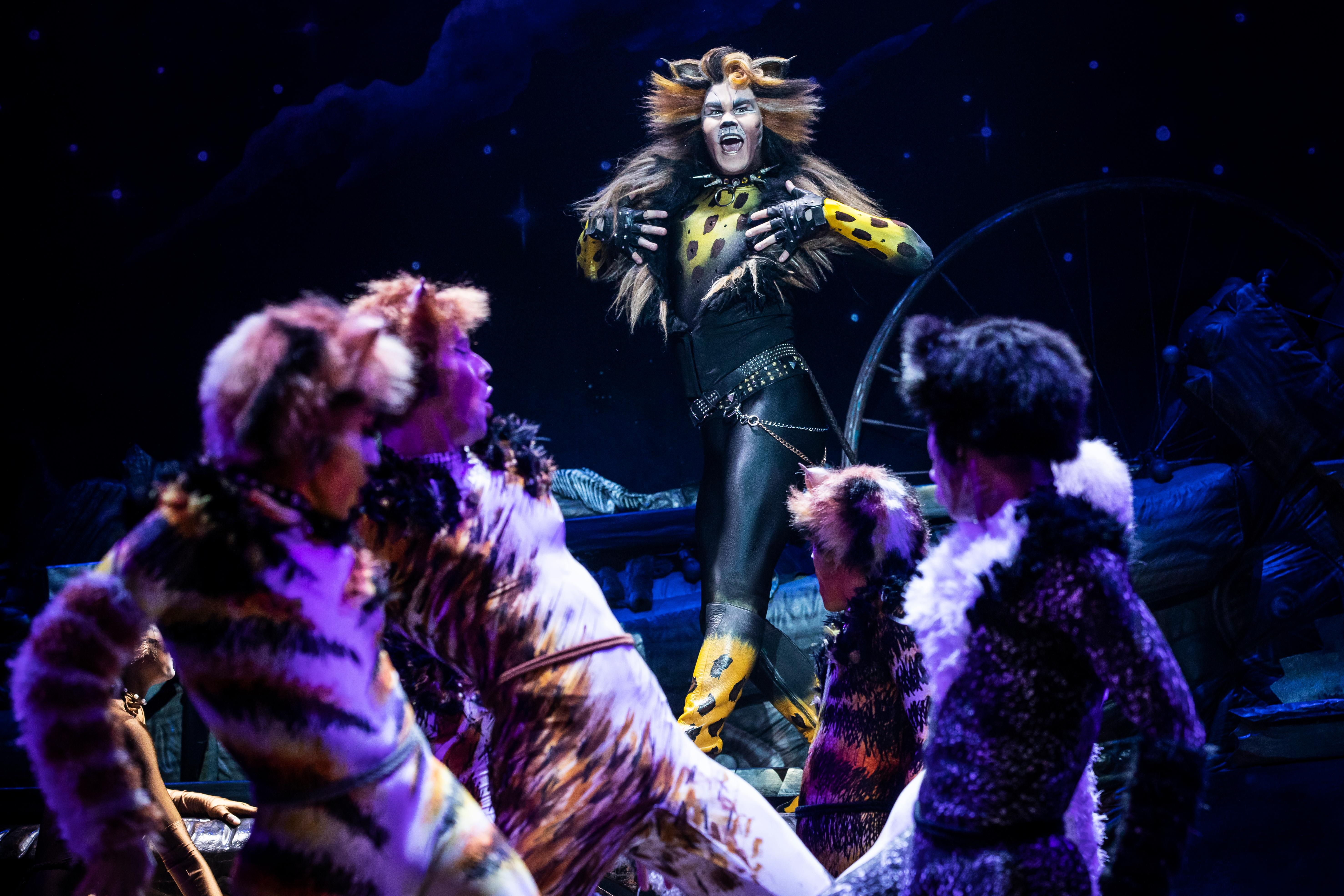 For eight performances only, the first ever Broadway revival of CATS is coming to the Paramount! The original Broadway production opened in 1982 at Broadway's Winter Garden Theater, where it ran for 7,485 performances and 18 years. Since its world premiere, CATS has been presented in more than 30 countries, has been translated into 15 languages, and has been seen by more than 73 million people worldwide. Starting from{&amp;nbsp;}Tuesday, March 26 to Sunday, March 31, CATS is gracing Seattle with their presence and<a  href=&quot;https://seattle.broadway.com/shows/cats-baa/&quot; target=&quot;_blank&quot;>{&amp;nbsp;}you can grab your tickets, starting at $40</a>. (Image courtesy of Broadway at the Paramount).
