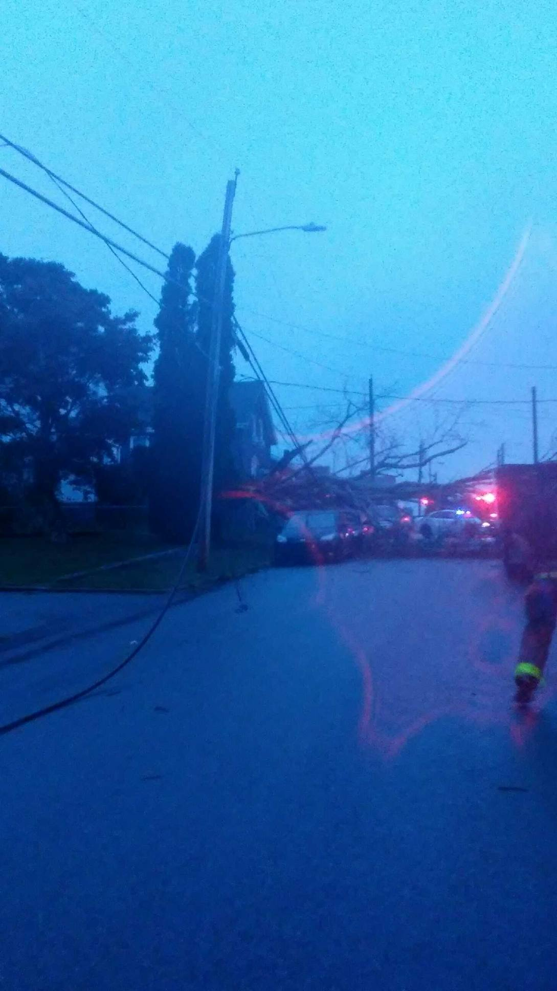 A large tree came crashing down on power lines and cars in Tiverton Wednesday, Sept. 20, 2017. (Submitted photo)