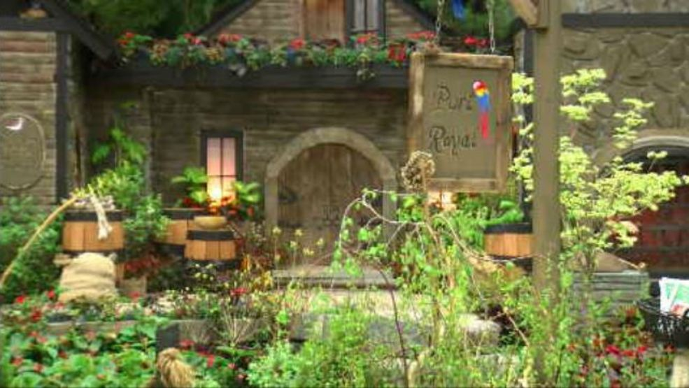 Annual garden and flower show returns to the Capital Region | WRGB