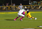 REYNOLDS AT TUSCOLA.transfer_frame_1234.jpg