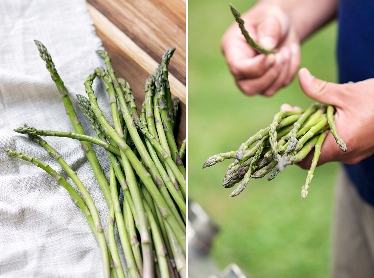 <p>Asparagus is one of the spring vegetables grown on the farm for the CSA shares. / Image: Allison McAdams // Published: 5.15.20  </p>