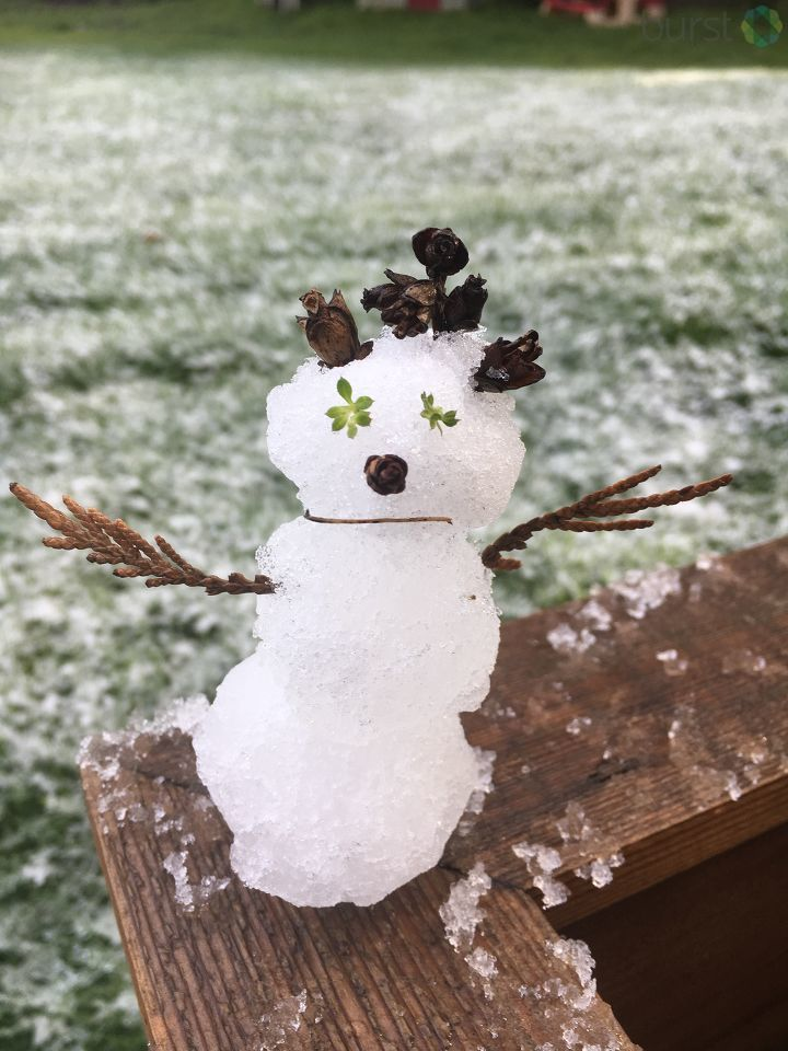 Independence, Oregon Snow Girl - Photo from Sally Skinner.jpg