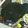 Police release video of suspect in Westbrook armed robbery