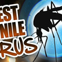 Ida Co. Man 1st Human West Nile Virus Case of 2017