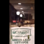 VIDEO: Rat spotted in American University eatery