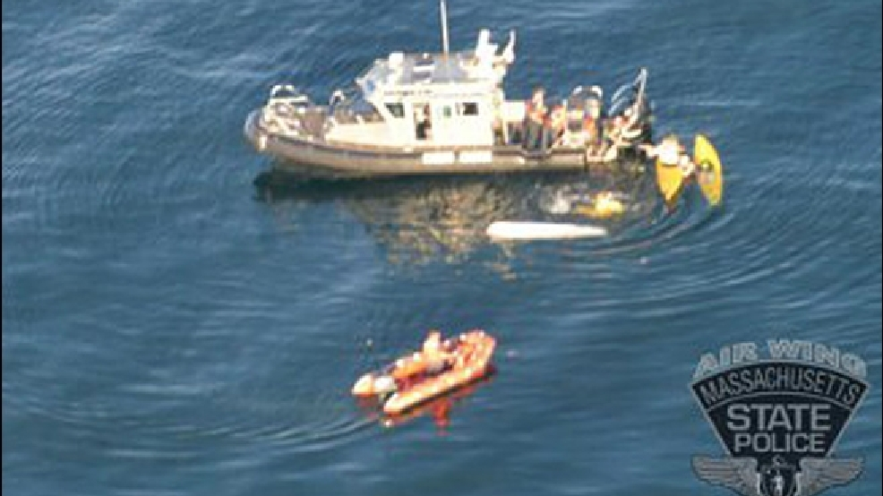 Great White Shark Attack Petrifies Mass Kayakers