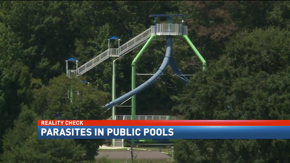 Parasite Cases In Public Pools Have Doubled Wpmi
