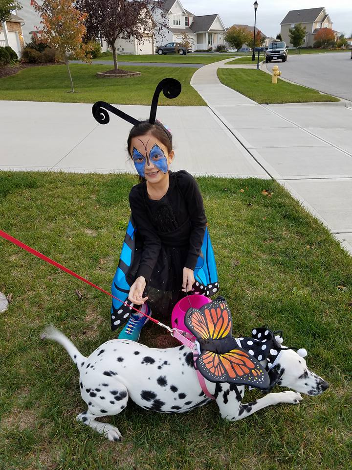 Girl and dog as buttefly. Submitted by Johanna Klein