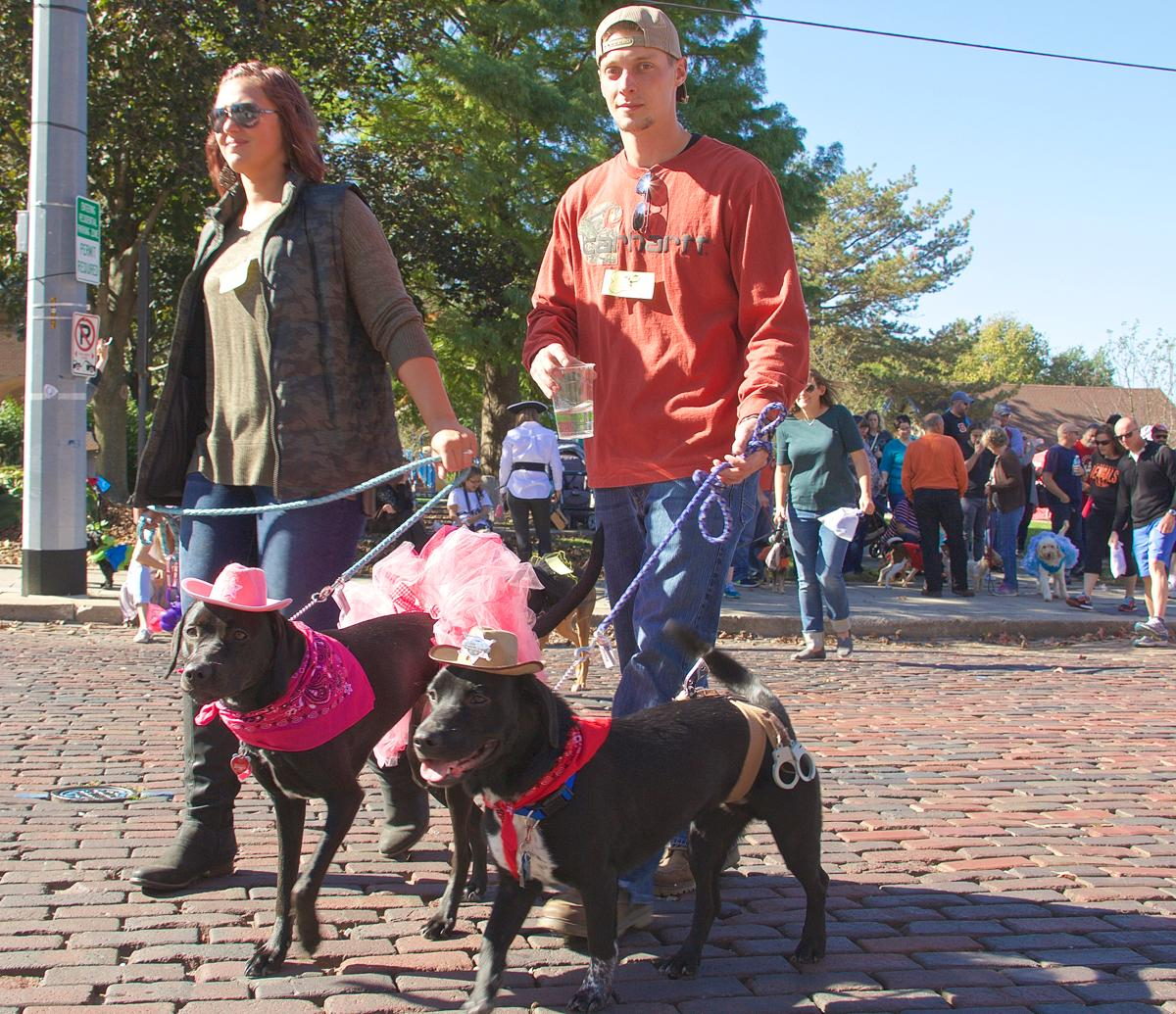 The city of Covington hosted a Dog Costume Pawrade on Sunday, Oct. 23. And boy oh boy were the pups adorable. / Image: Dr. Richard Sanders // Published: 10.24.16