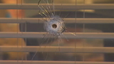 Stray bullet kills woman in Burien gun battle, suspects still on the loose