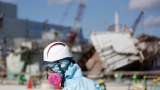 Fukushima radiation detected at Tillamook Bay, Gold Beach shores