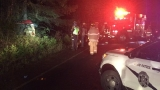 Man killed after crashing into tree while texting and driving in Thurston County