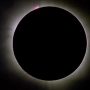 Watch the Aug. 21 total solar eclipse from Eola Hills Legacy Vineyard